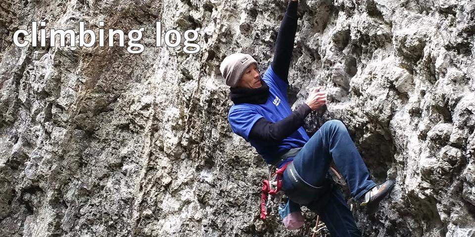 climbing log